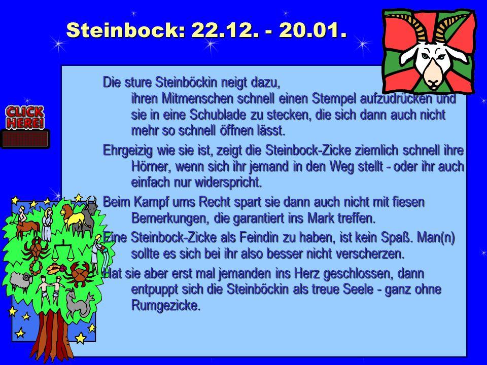 Steinbock: 22.12. - 20.01.