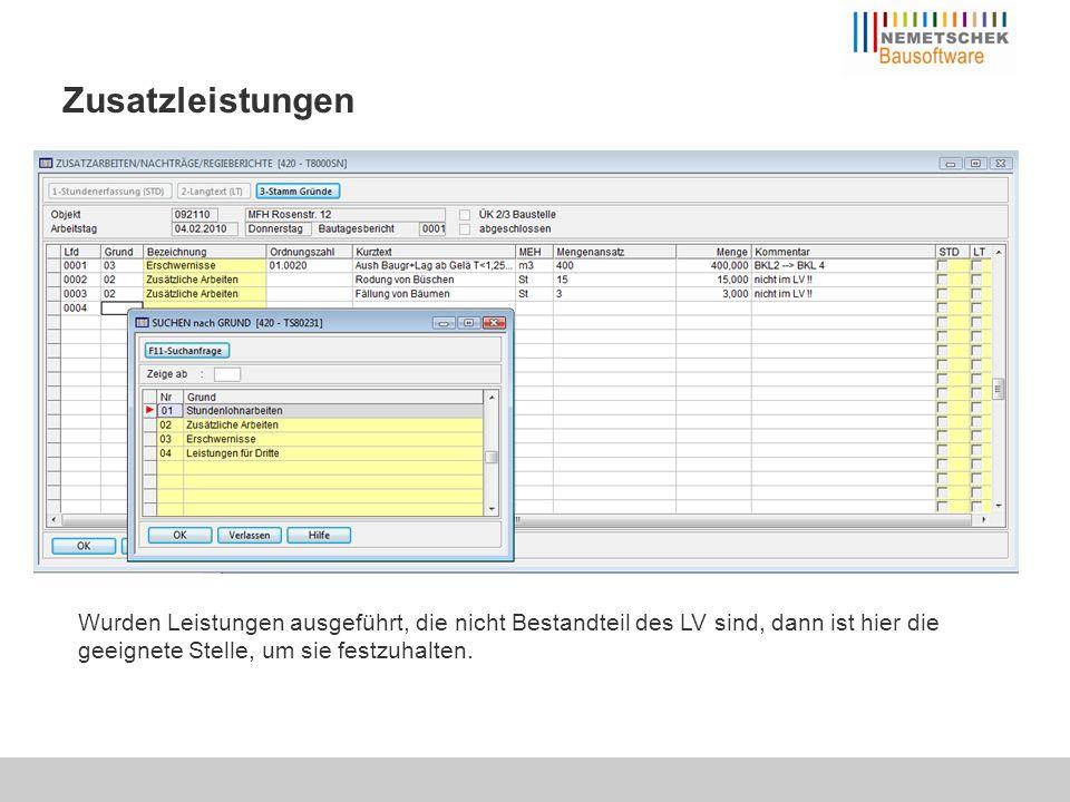 """Bautagebuch Die Liste der """"Baustellenbesuche und das Planeingangsbuch runden die Projektinformationen ab."""