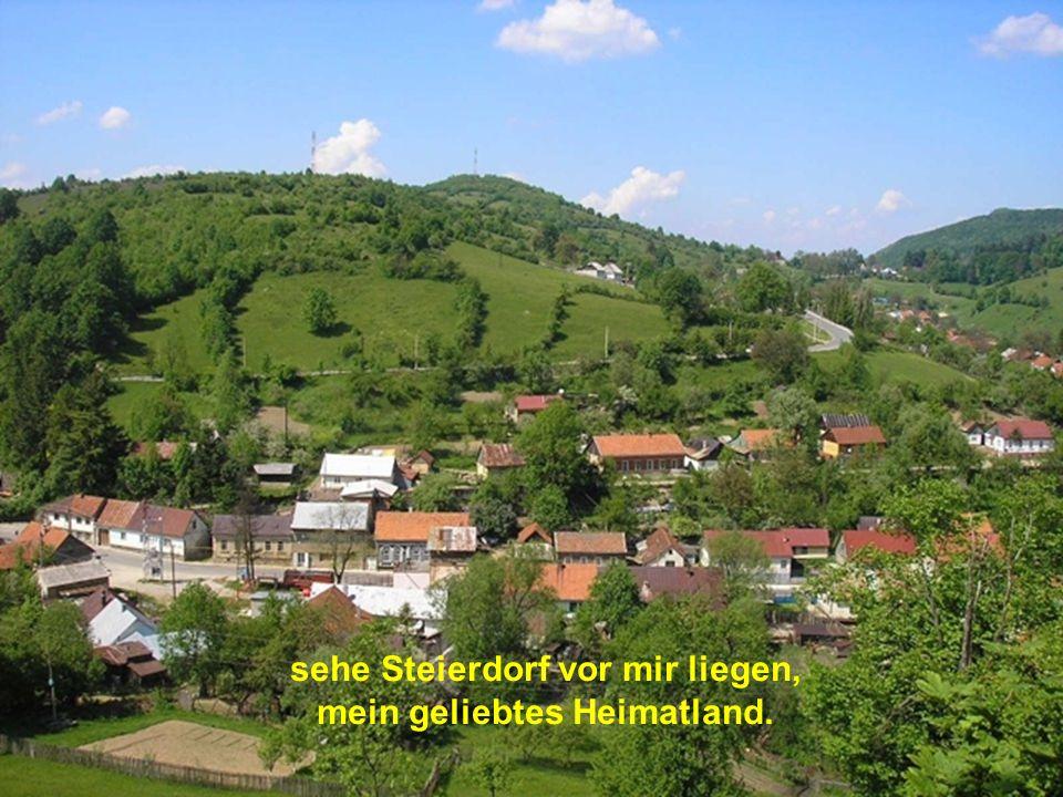 sehe Steierdorf vor mir liegen, mein geliebtes Heimatland.