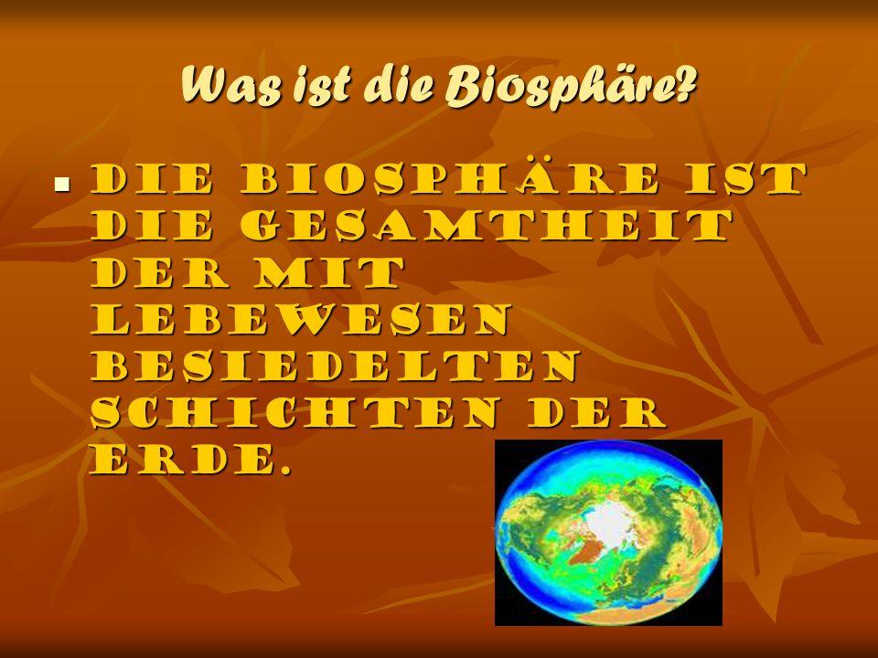 Was ist die Biosphäre.