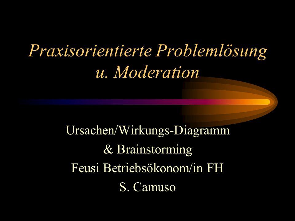 Praxisorientierte Problemlösung u. Moderation
