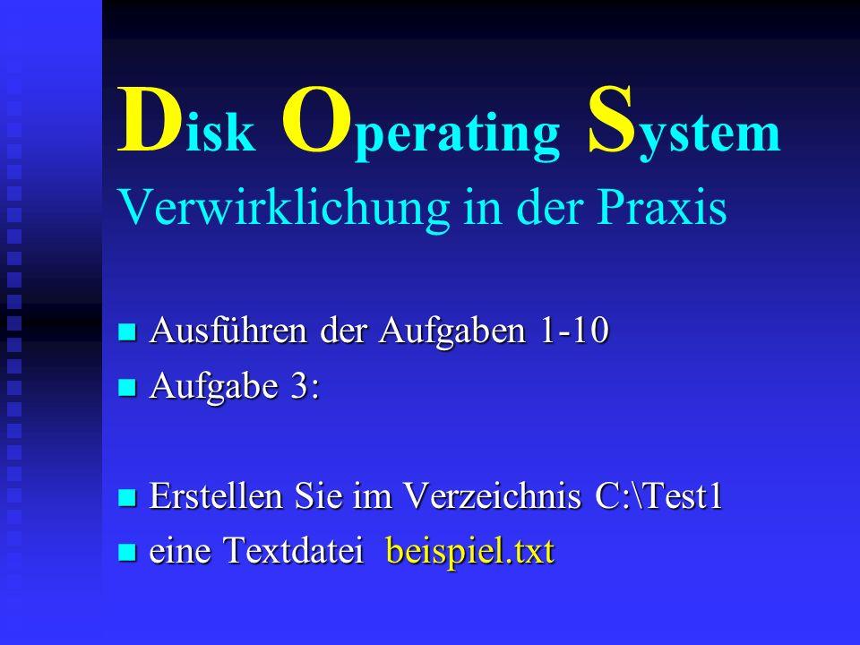Disk Operating System Verwirklichung in der Praxis