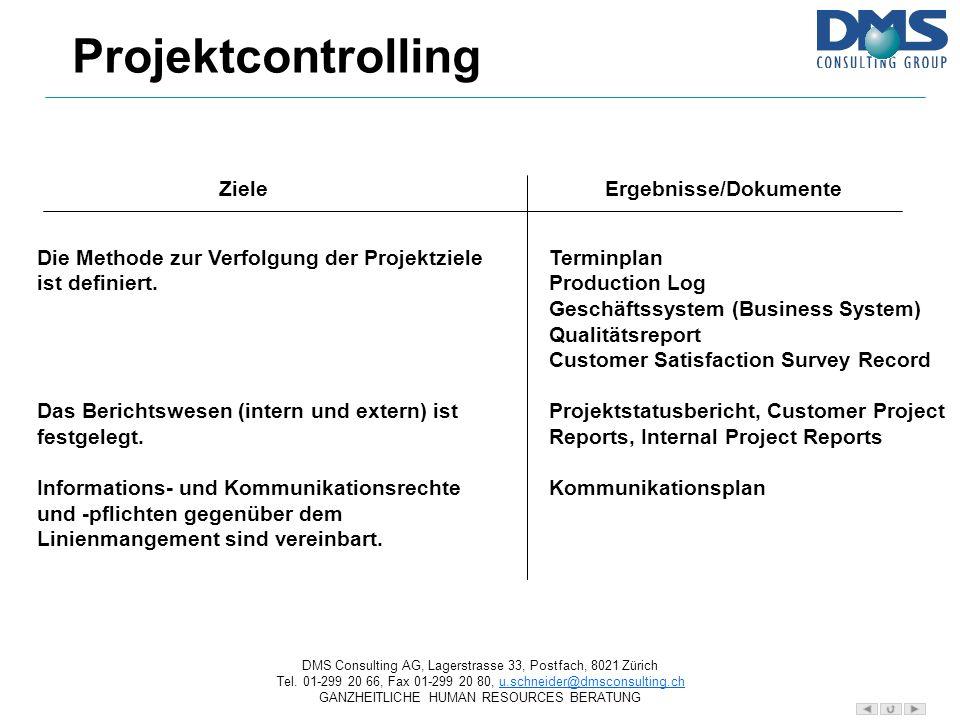 Projektcontrolling Ziele Ergebnisse/Dokumente