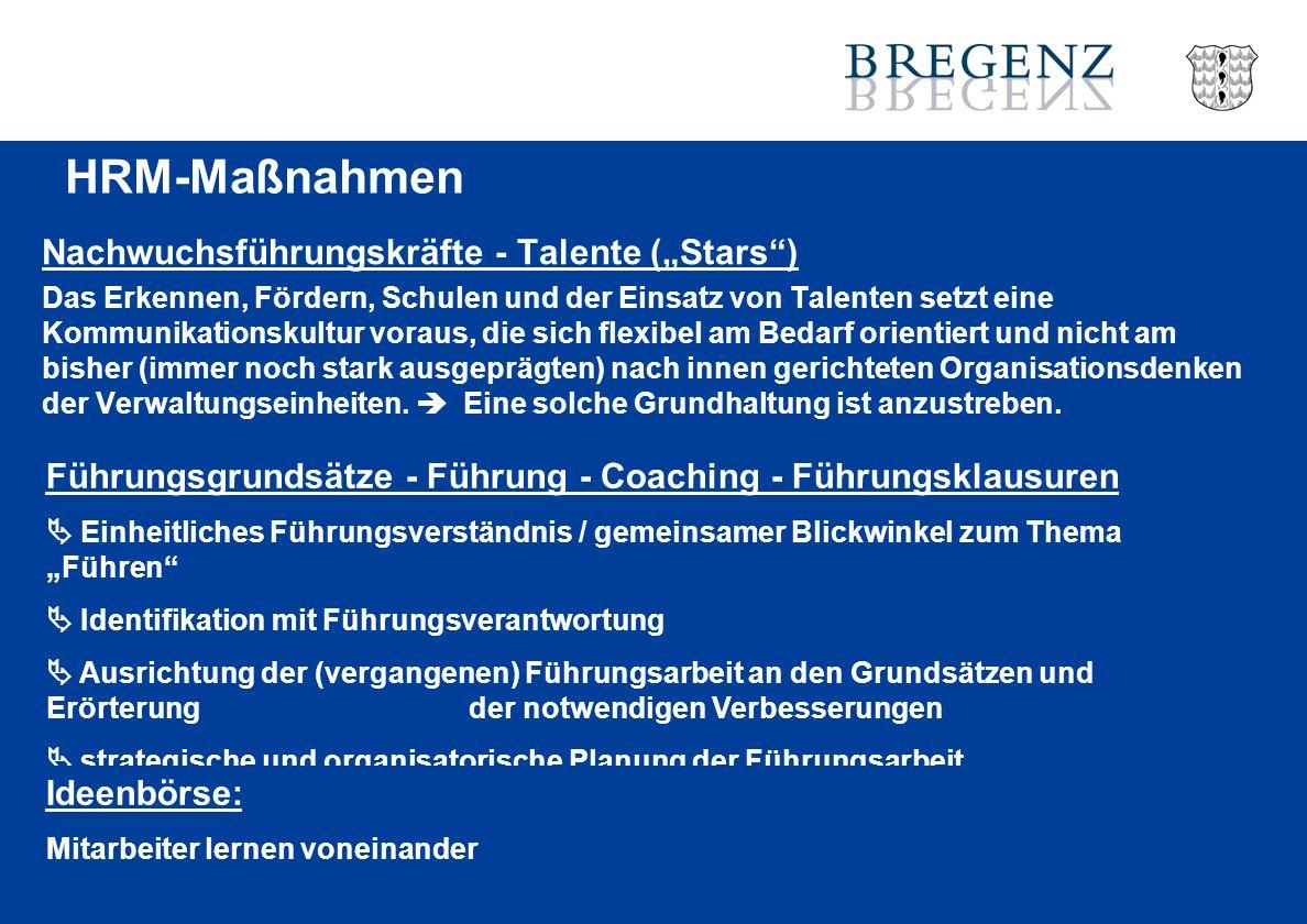"""HRM-Maßnahmen Nachwuchsführungskräfte - Talente (""""Stars )"""