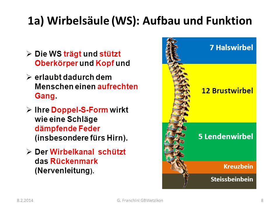 Erfreut Wirbelkanal Anatomie Galerie - Anatomie Ideen - finotti.info
