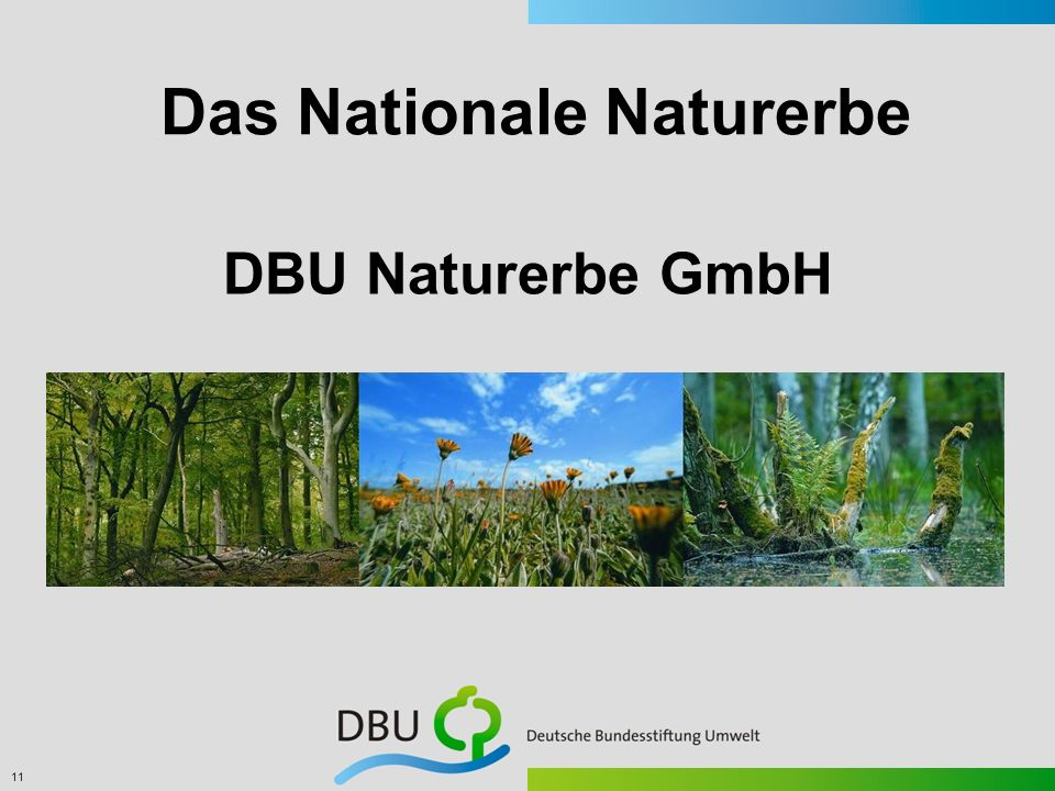 Das Nationale Naturerbe