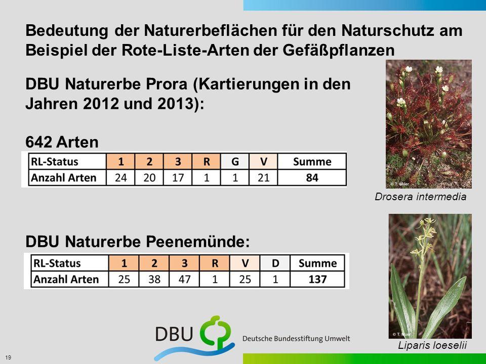 DBU Naturerbe Prora (Kartierungen in den Jahren 2012 und 2013):