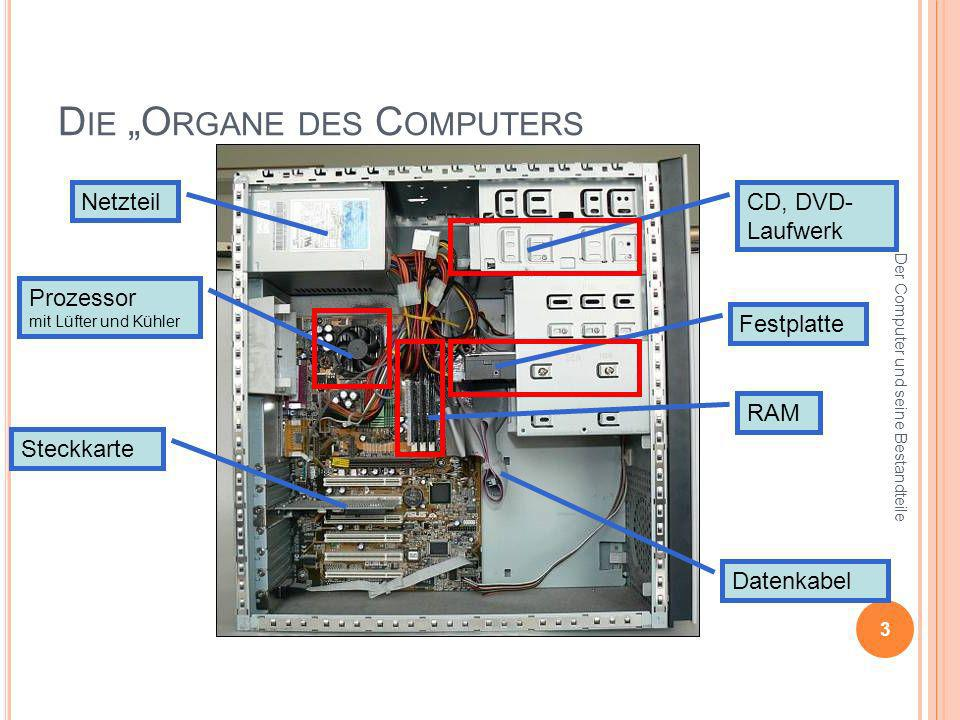 "Die ""Organe des Computers"