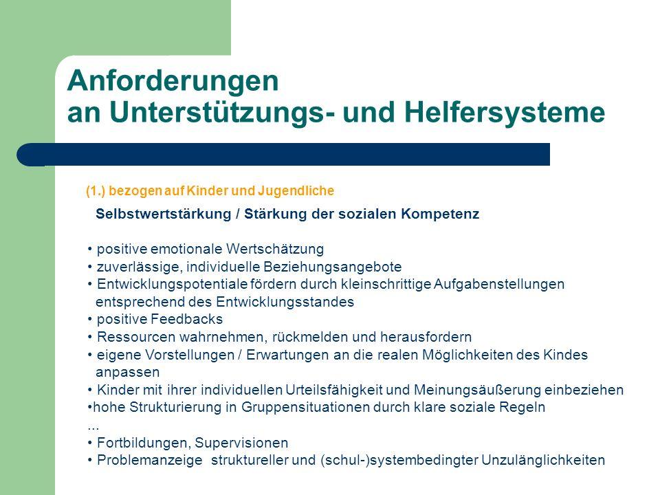 Anforderungen an Unterstützungs- und Helfersysteme