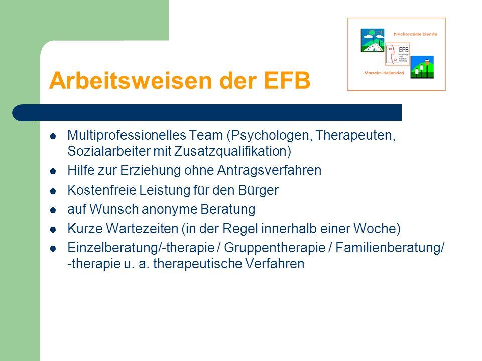 Arbeitsweisen der EFB Multiprofessionelles Team (Psychologen, Therapeuten, Sozialarbeiter mit Zusatzqualifikation)