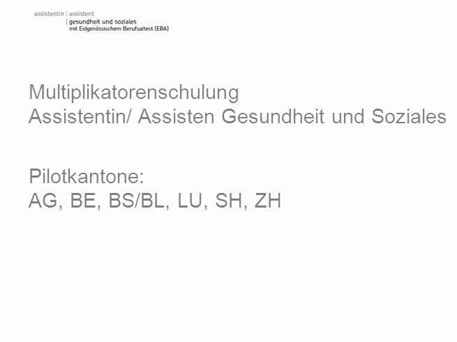 Multiplikatorenschulung Assistentin/ Assisten Gesundheit und Soziales