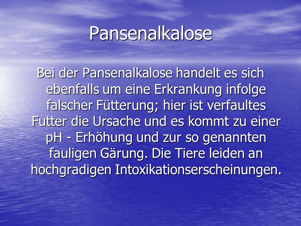 Pansenalkalose