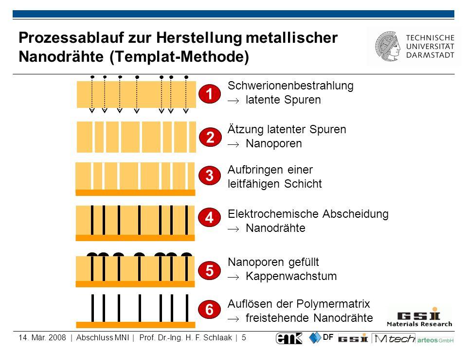 Prozessablauf zur Herstellung metallischer Nanodrähte (Templat-Methode)