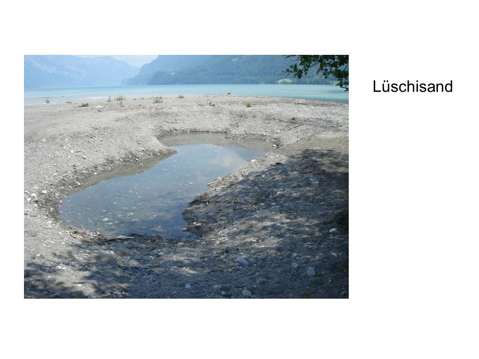 Lüschisand