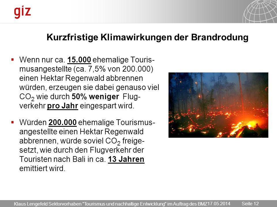 Kurzfristige Klimawirkungen der Brandrodung