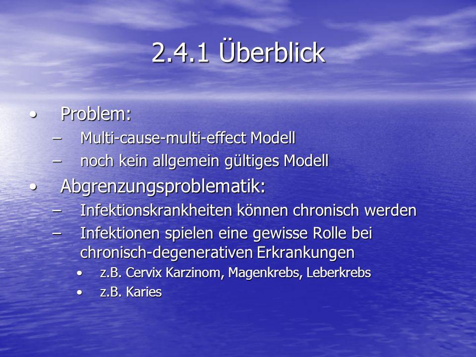 2.4.1 Überblick Problem: Abgrenzungsproblematik:
