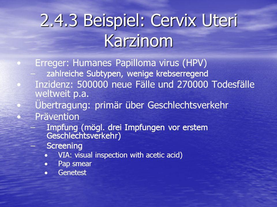 2.4.3 Beispiel: Cervix Uteri Karzinom