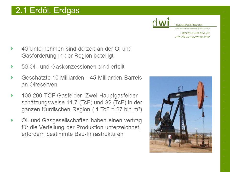 2.1 Erdöl, Erdgas ………………………………………………………………