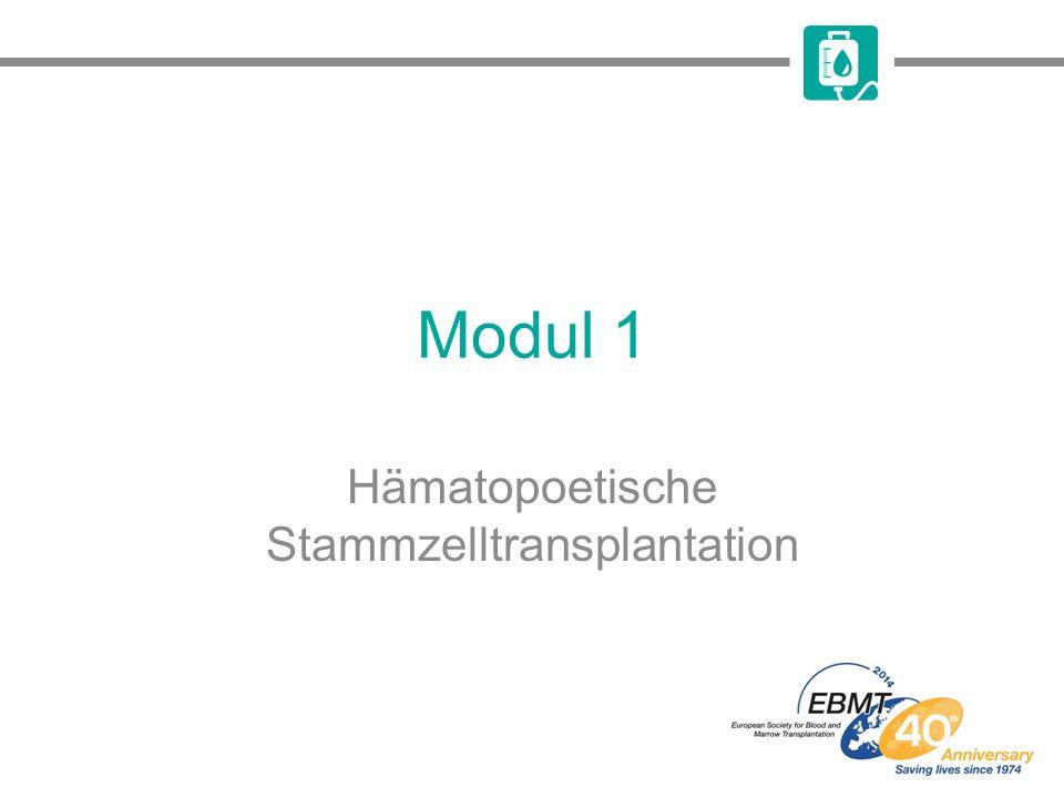 Hämatopoetische Stammzelltransplantation