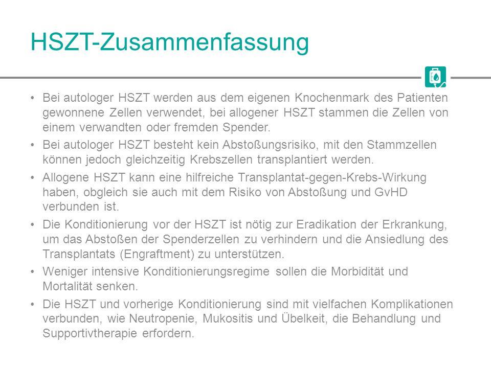 HSZT-Zusammenfassung