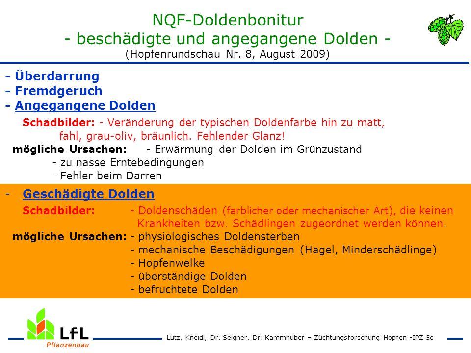 NQF-Doldenbonitur - beschädigte und angegangene Dolden - (Hopfenrundschau Nr. 8, August 2009)