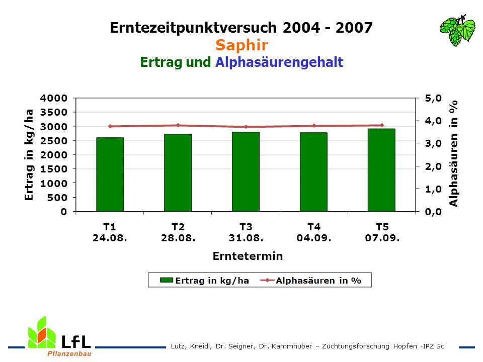 Erntezeitpunktversuch 2004 - 2007 Saphir Ertrag und Alphasäurengehalt