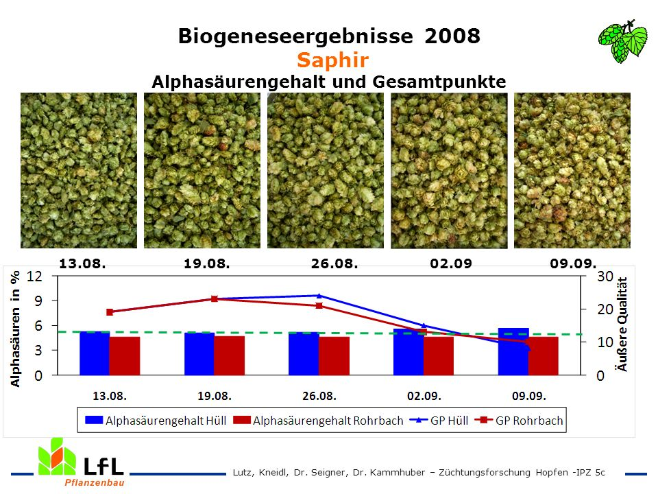 Biogeneseergebnisse 2008 Saphir Alphasäurengehalt und Gesamtpunkte