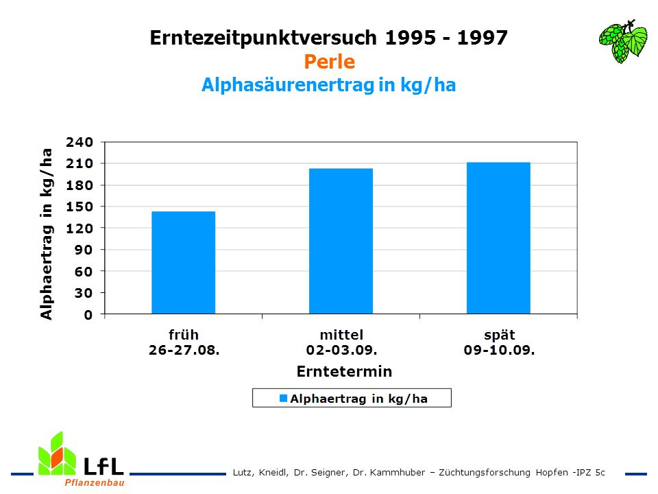Erntezeitpunktversuch 1995 - 1997 Perle Alphasäurenertrag in kg/ha