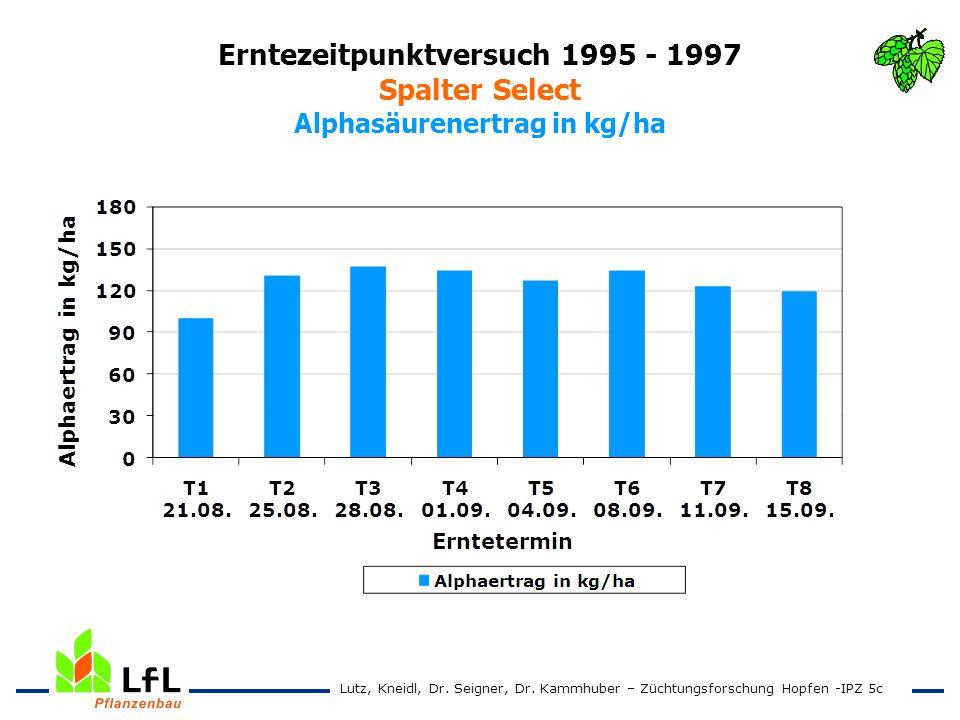 Erntezeitpunktversuch 1995 - 1997 Spalter Select Alphasäurenertrag in kg/ha