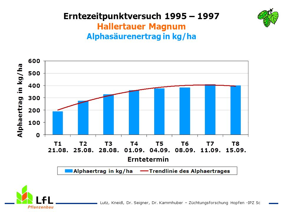 Erntezeitpunktversuch 1995 – 1997 Hallertauer Magnum Alphasäurenertrag in kg/ha