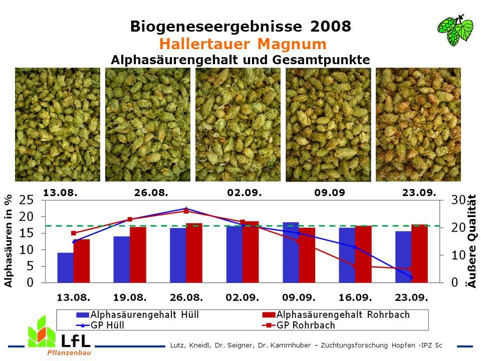 Biogeneseergebnisse 2008 Hallertauer Magnum Alphasäurengehalt und Gesamtpunkte
