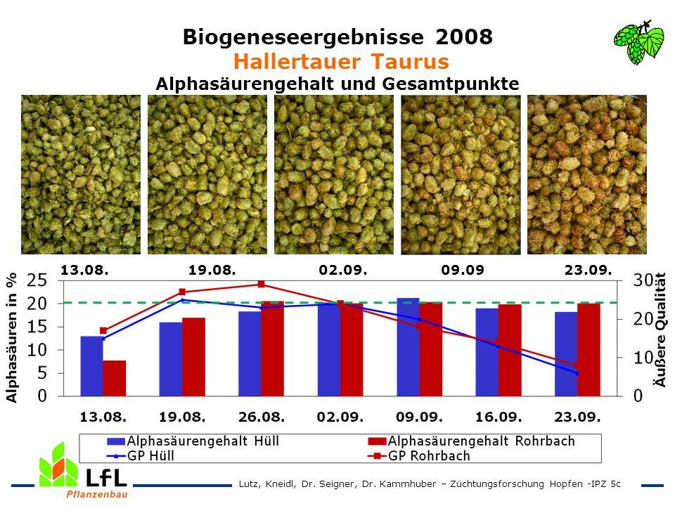 Biogeneseergebnisse 2008 Hallertauer Taurus Alphasäurengehalt und Gesamtpunkte