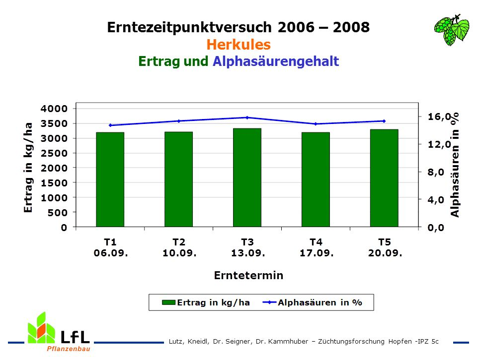 Erntezeitpunktversuch 2006 – 2008 Herkules Ertrag und Alphasäurengehalt