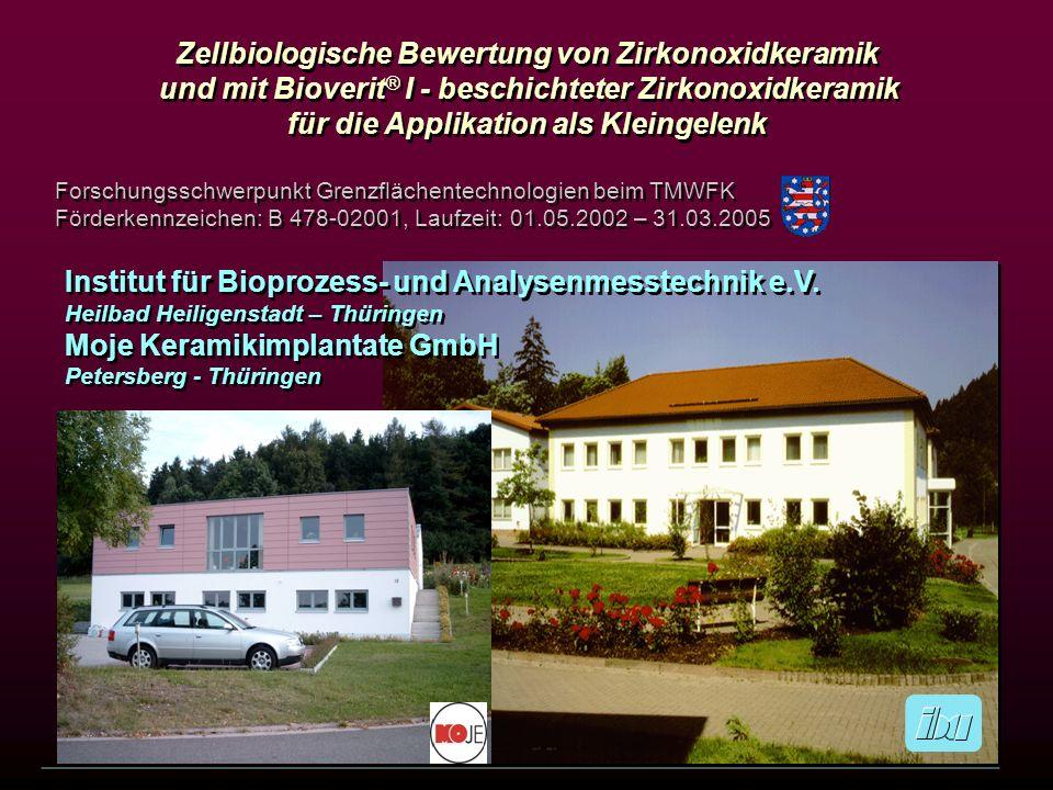 Zellbiologische Bewertung von Zirkonoxidkeramik
