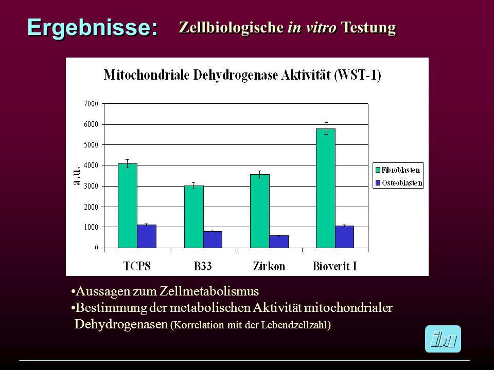 Ergebnisse: Zellbiologische in vitro Testung