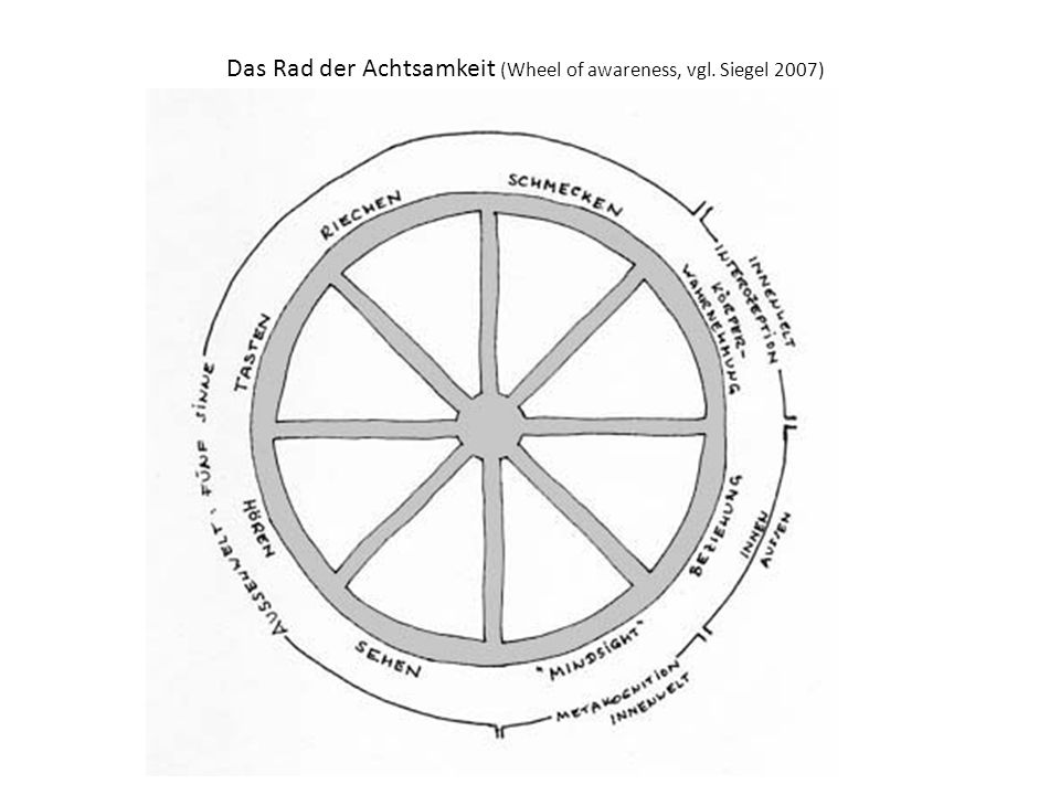 Das Rad der Achtsamkeit (Wheel of awareness, vgl. Siegel 2007)