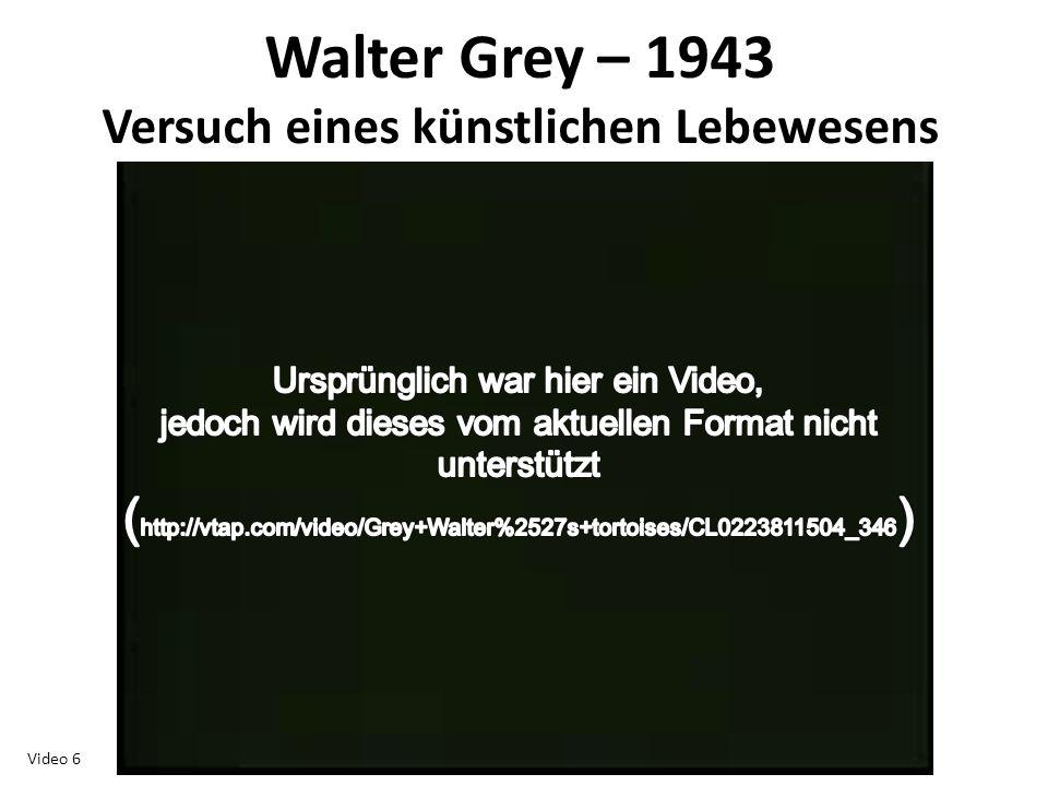 Walter Grey – 1943 Versuch eines künstlichen Lebewesens