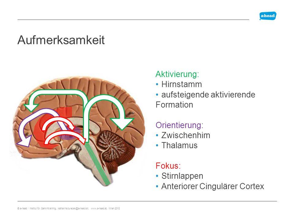 Aufmerksamkeit Übersicht Aktivierung: Hirnstamm