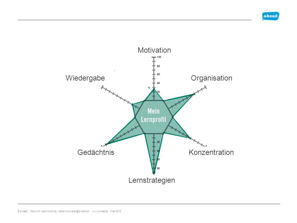 Lernprofil Motivation Wiedergabe Organisation Gedächtnis Konzentration