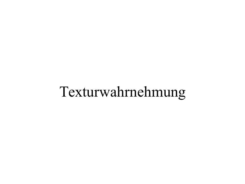 Texturwahrnehmung