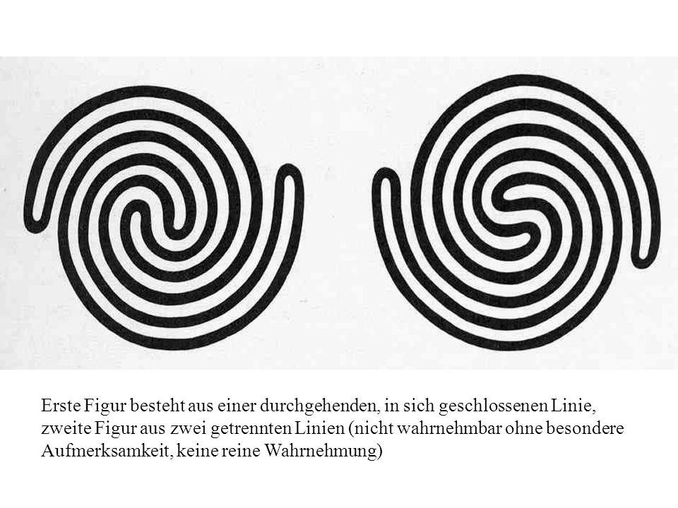 Erste Figur besteht aus einer durchgehenden, in sich geschlossenen Linie, zweite Figur aus zwei getrennten Linien (nicht wahrnehmbar ohne besondere Aufmerksamkeit, keine reine Wahrnehmung)