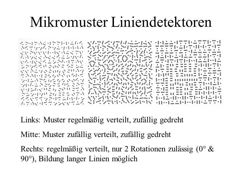 Mikromuster Liniendetektoren