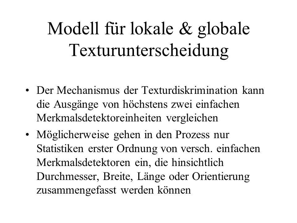 Modell für lokale & globale Texturunterscheidung