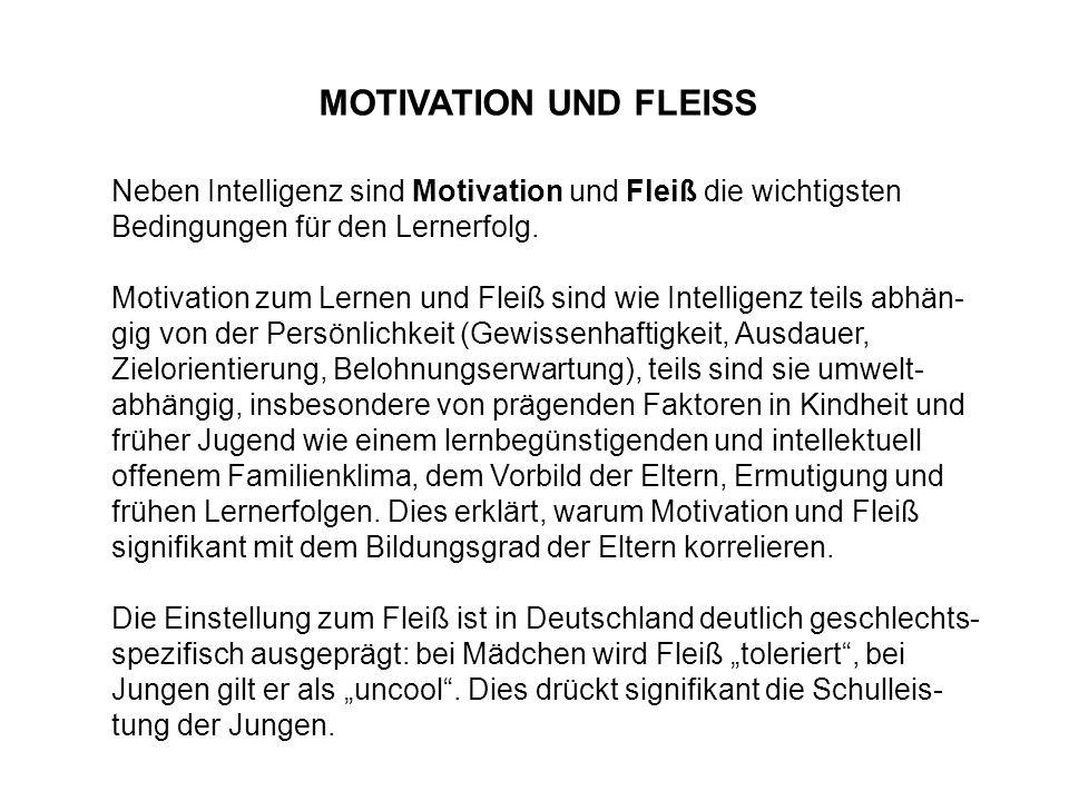 MOTIVATION UND FLEISS Neben Intelligenz sind Motivation und Fleiß die wichtigsten Bedingungen für den Lernerfolg.