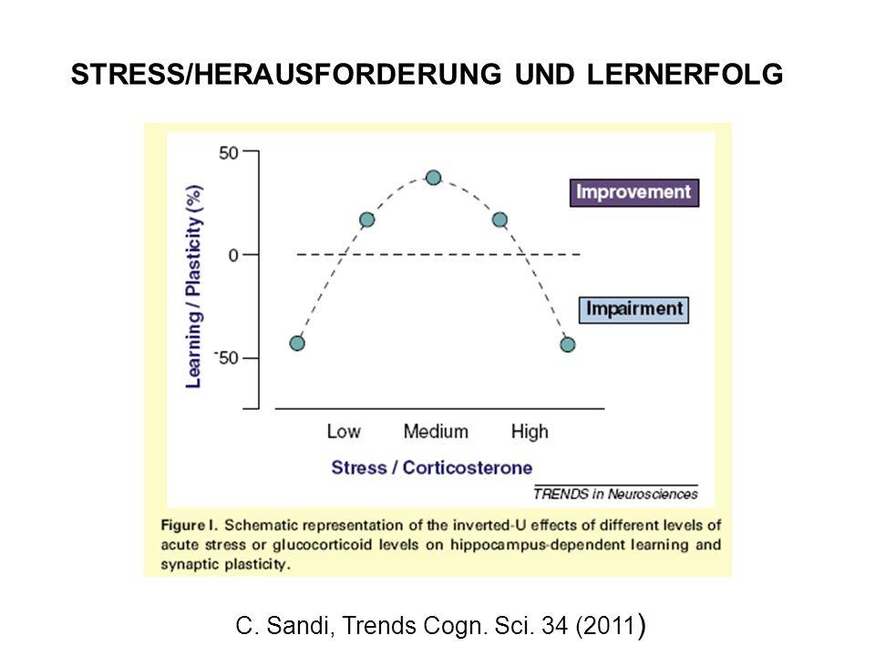 C. Sandi, Trends Cogn. Sci. 34 (2011)