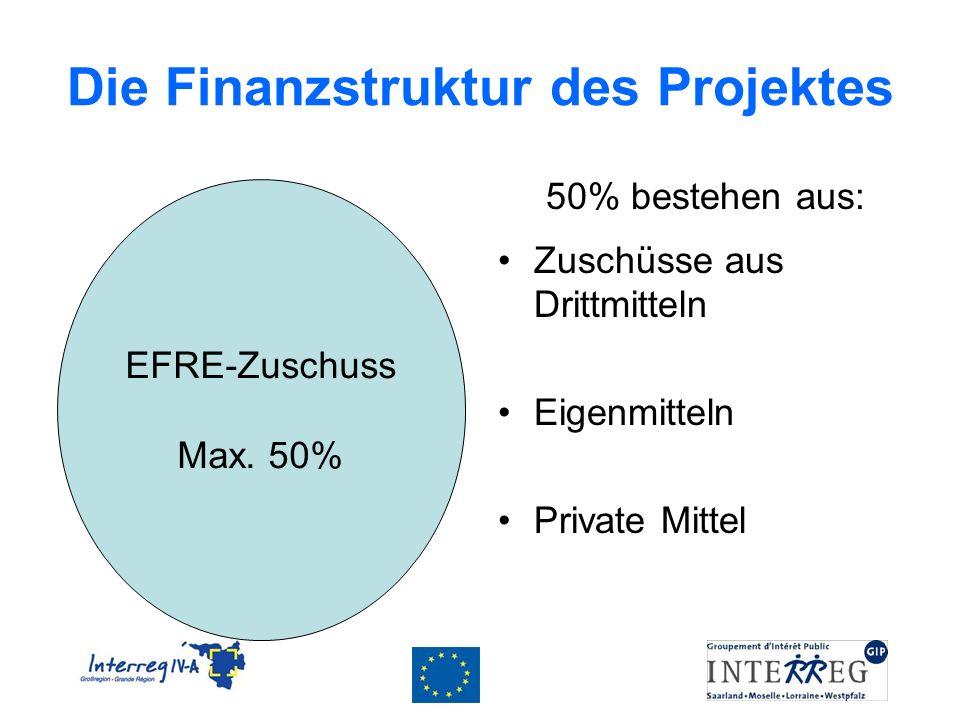 Die Finanzstruktur des Projektes