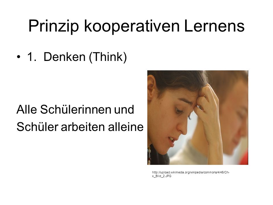 Prinzip kooperativen Lernens