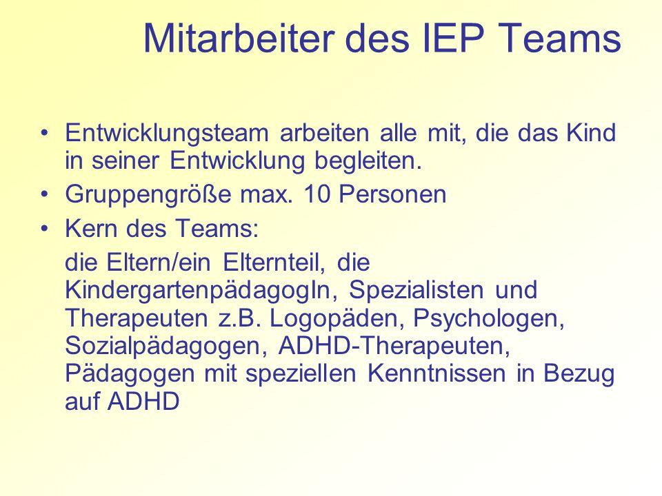 Mitarbeiter des IEP Teams