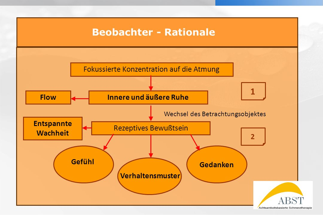Beobachter - Rationale