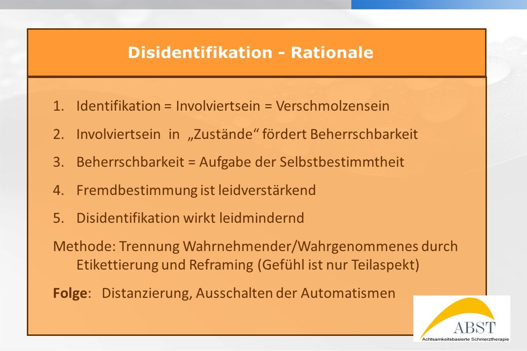 Disidentifikation - Rationale